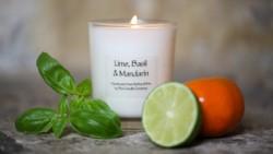 Lime, Basil & Mandarin (11)